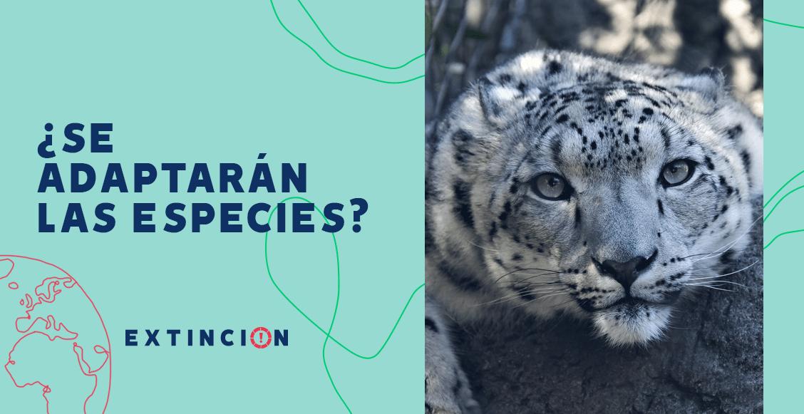 extincion-adaptacion-especies-cambio-climatico