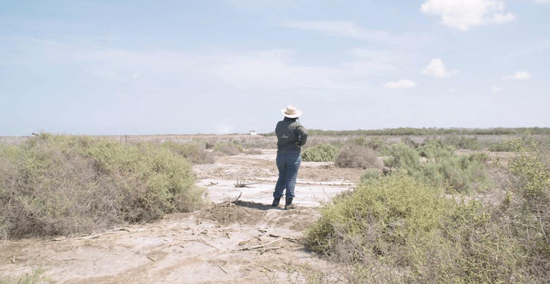 'Te nombré en el silencio', el documental sobre las madres rastreadoras que caminan sobre muertos