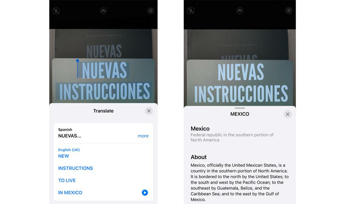 Copiar o traducir: las funciones de Live Text en IOS15