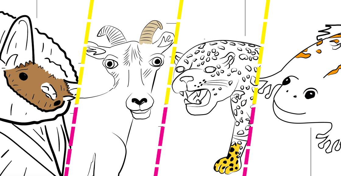 dibujos-ilustraciones-borrego-crikoso-cricoso-feo-profepa-facebook-animales