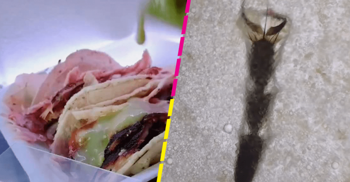 Tiktoker analiza tacos callejeros bajo el microscopio y se lleva una asquerosa sorpresa