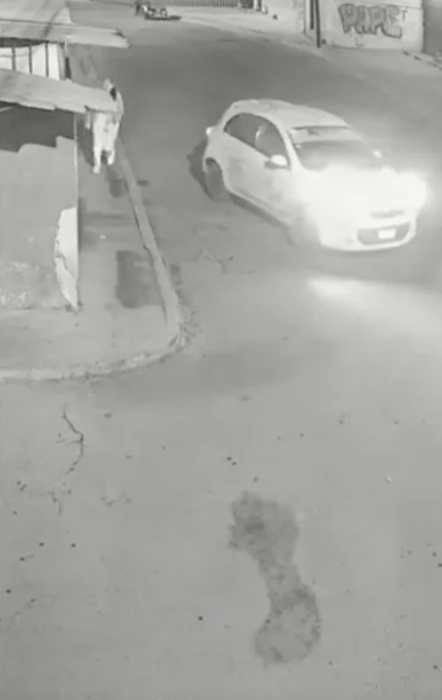 Cámaras captan a taxista que intenta secuestrar a enfermera en Tultepec
