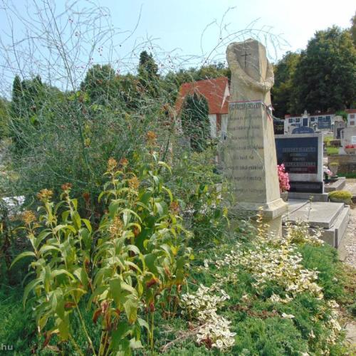 A Maderspach Kommandó ismét egy régi síremléket tett rendbe