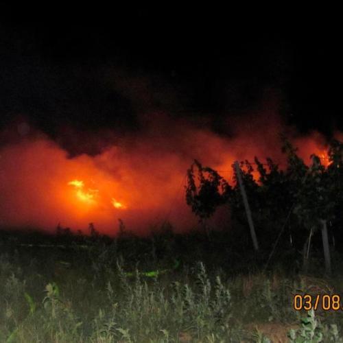 Lángoltak a szalmabálák Rust és Mörbich között