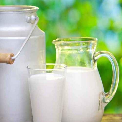 Megdöbbentő adat: Évente 116 millió tonna tej és tejtermék vész kárba világszerte