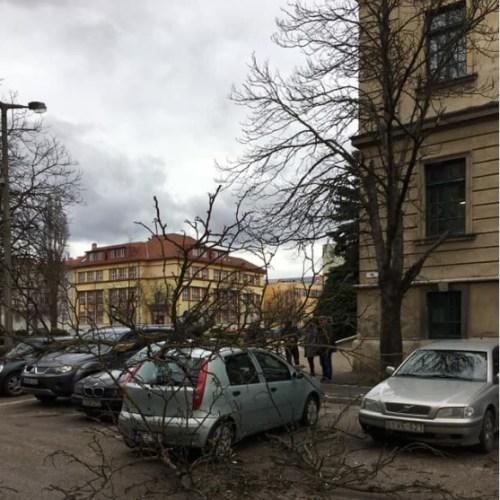 Sopronban 114 km/h-s széllökést mértek
