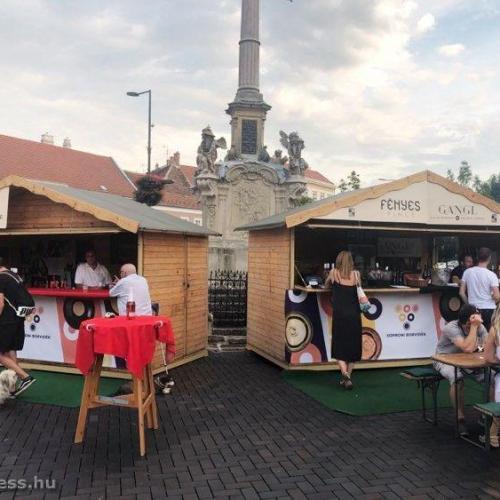 Kitelepültek a soproni borosgazdák a Várkerületre