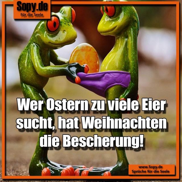 Sopy Lustige Alkohol Spruche Spruchbilder Zitate