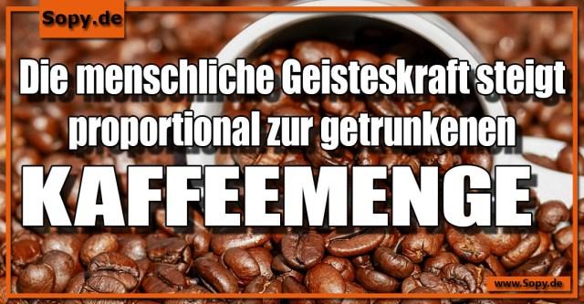 Kaffeemenge