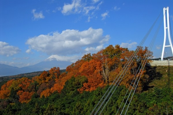 "Japan's longest bridge ""Mishima sky walk"" – Excellent Mt.Fuji views"