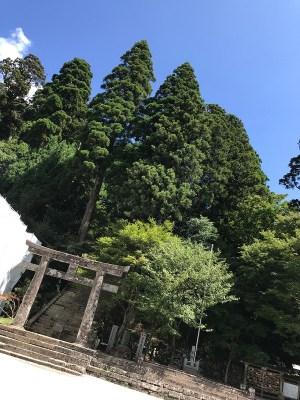 福岡の英彦山神宮の写真