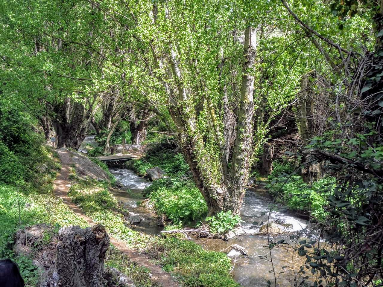 Cañones naturales en Soria