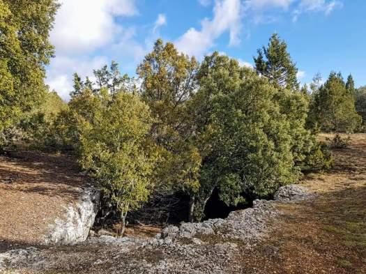 Acceso a la Cueva Villaciervos. Lugares más curiosos de Soria