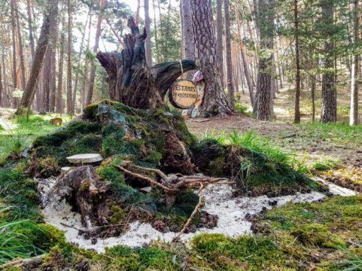Bosque mágico leñera