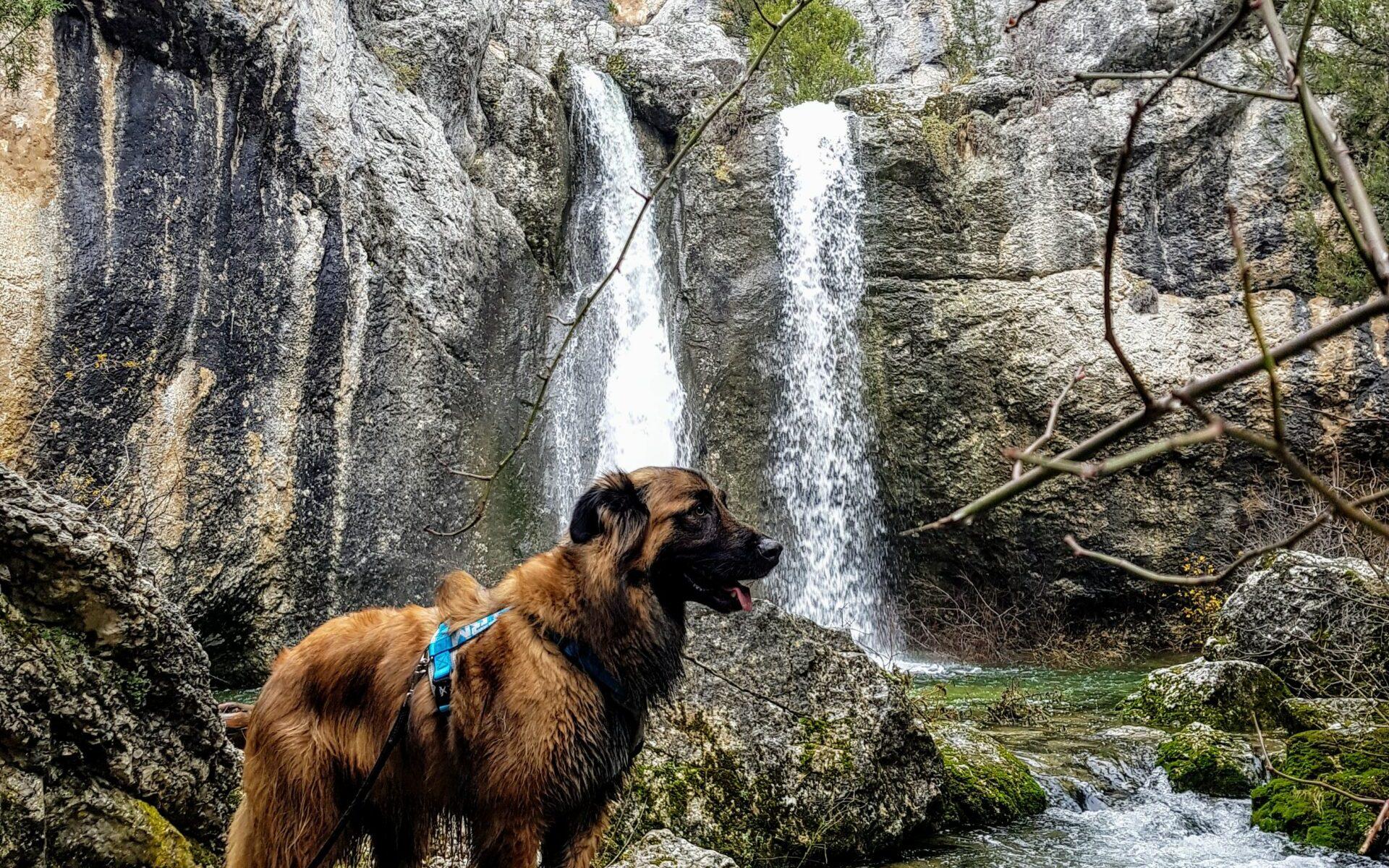 Cascada Fuentona