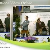 National-Show-Oviedo Exposiciones