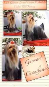 Guemart-Cuauthemoc-Tino1 Guemart´S Cuauthemoc