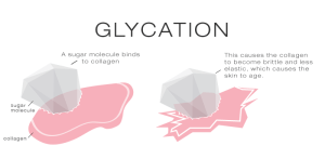 AGE protein glycation