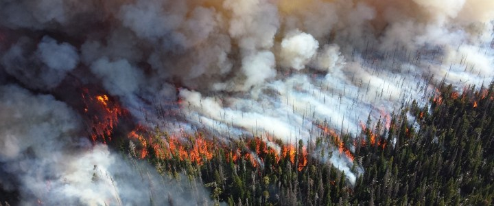 High Brush and Wildfire Insurance Policy Made Easier