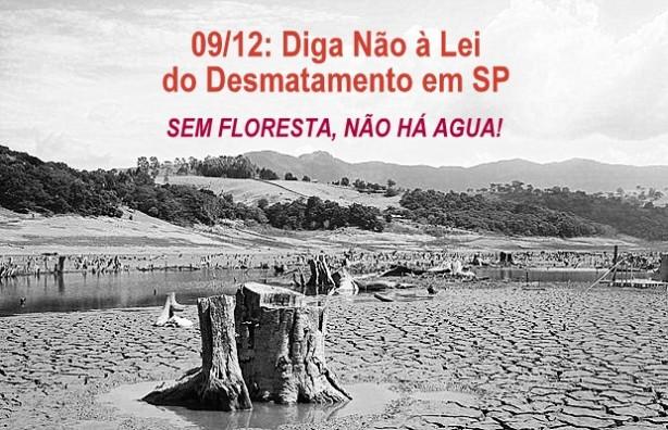 mobilizacao sem floresta nao tem agua 1