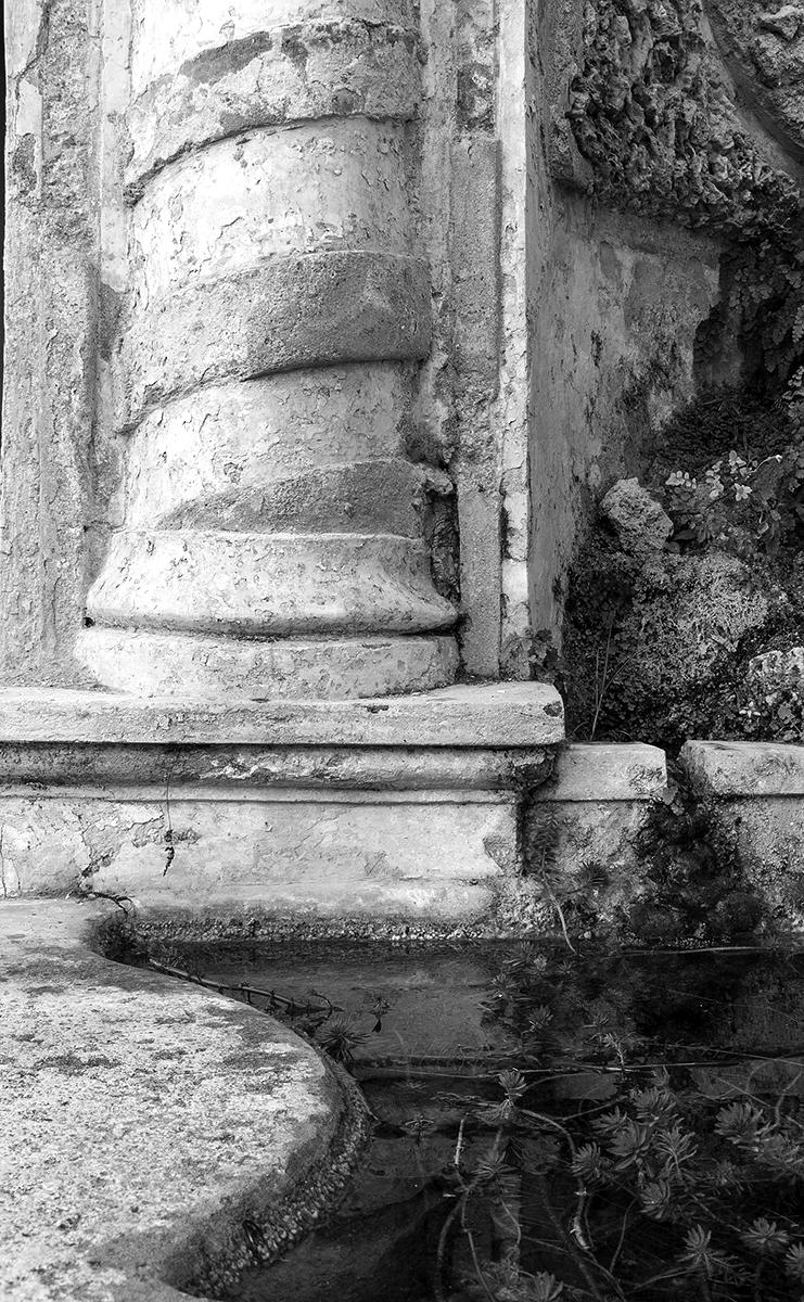 Dettaglio di colonna del Giardino della Minerva a Salerno. Foto di Sossio Mormile