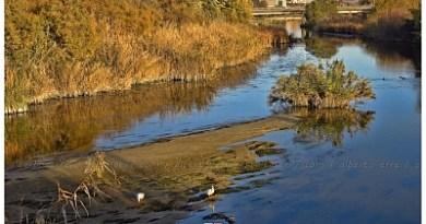 rio tajo a su paso por Talavera