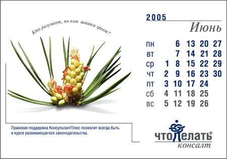 """РА """"Саша Медиа"""" разработало новый дизайн календаря для ..."""