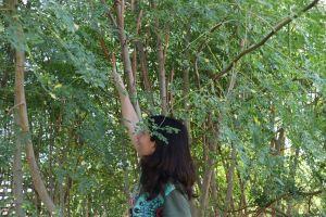 Laura Rubio Moringa Smile entre arboles de moringa