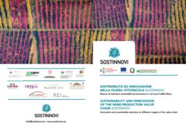 Anteprima Brochure Sostinnovi_Frontespizio