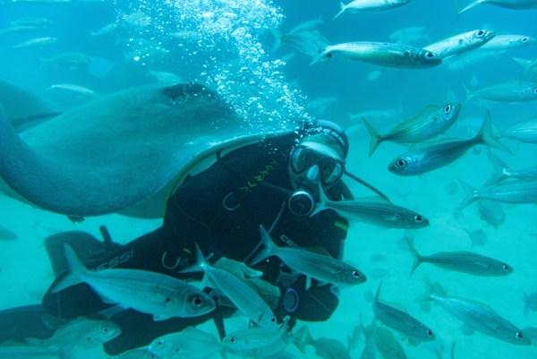 Diver keep blowing bubbles