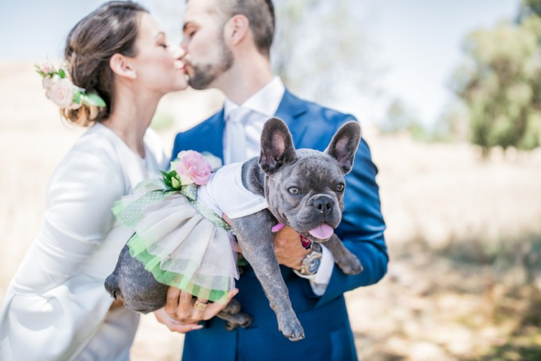 Engagement Photo Shoot with Flower Girl Dog
