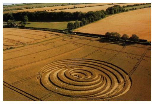 Crop Circle_1