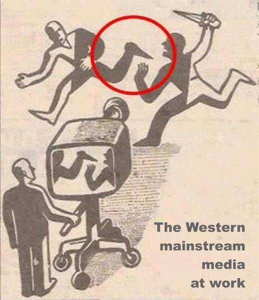 msm media