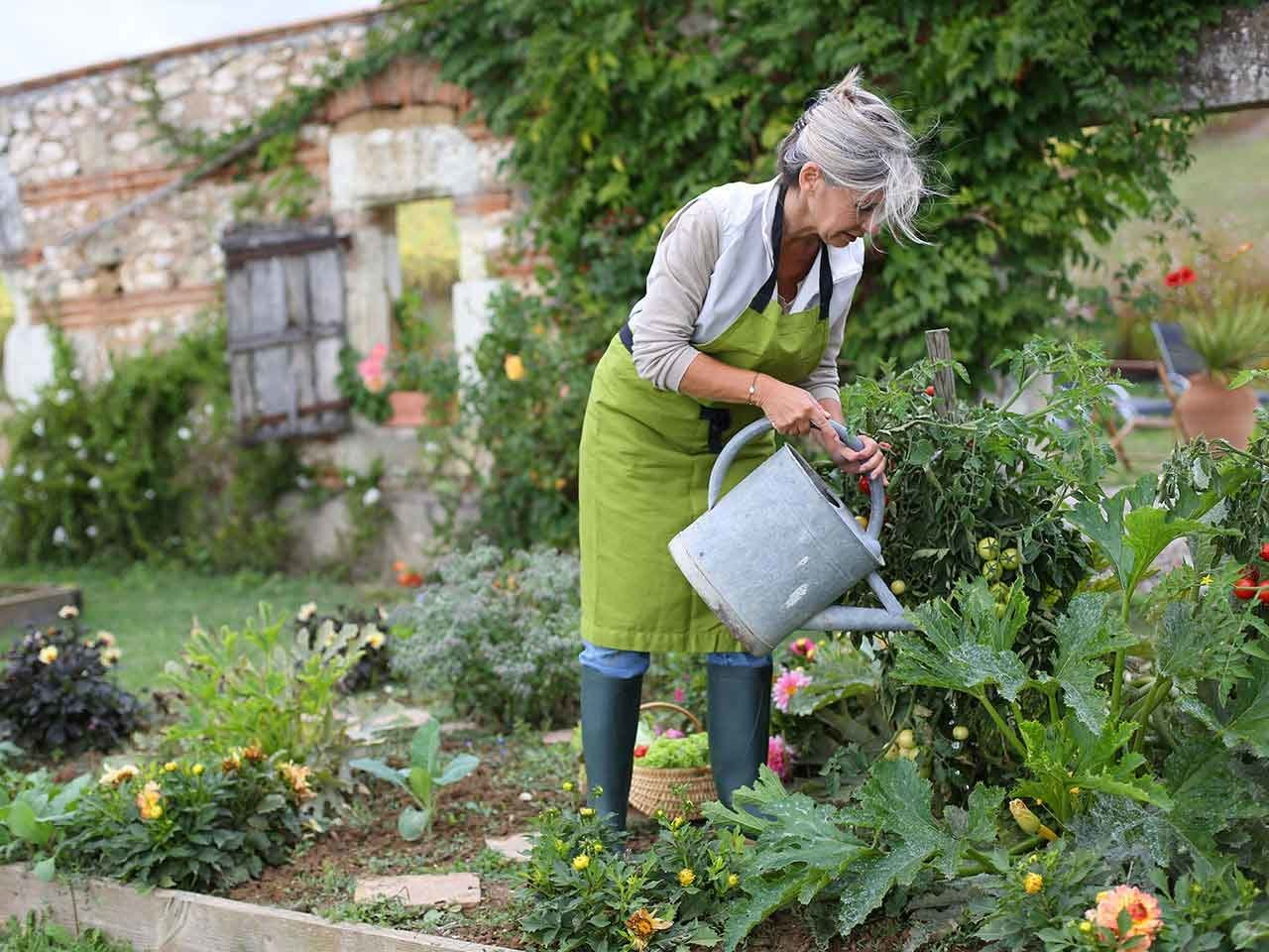 The many health and spirit-lifting benefits of gardening ... on Gardening  id=72597