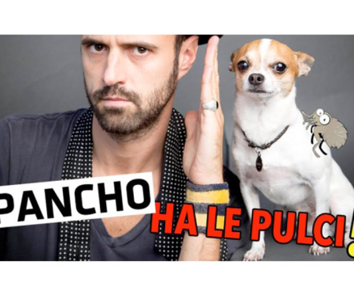 #lagrandenovità  lagrandenovità Nic and Pancho youtube