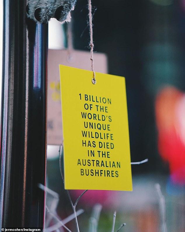 Koala of NYC   Il messaggio della campagna Cummins & Partner
