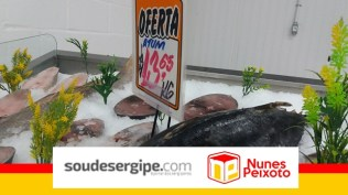 nunes-peixoto (6)