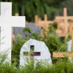 La mue des cimetières (5/5)