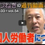■2018.12.3「外国人労働者について」大西つねきの週刊動画コラムvol.54