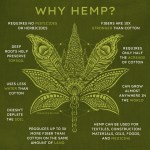 Hemp Clothing Benefits A Sustainable Choice Soul Flower Blog