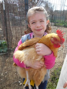 chicken hug