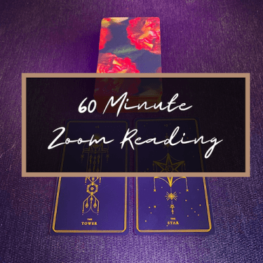 Book A 60 Minute Zoom Reading!