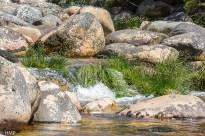 20171201-Elandspad_River015