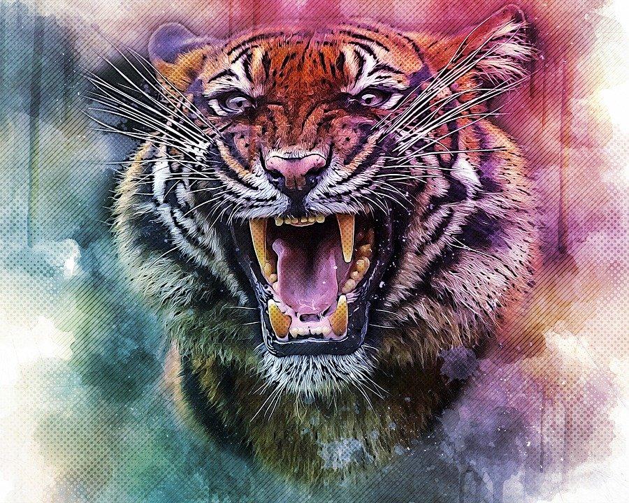 Wutarbeit mit dem inneren Tiger