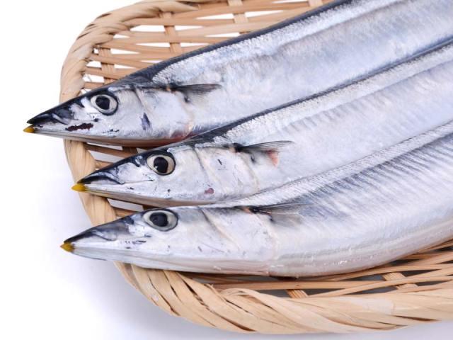 秋の味覚 秋刀魚(秋刀魚)
