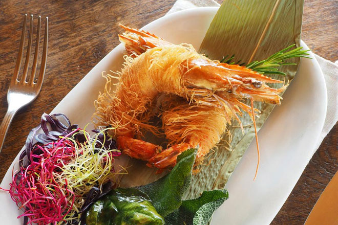shrimp-small