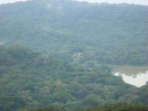 Gamboa Rainforest Tribal Village