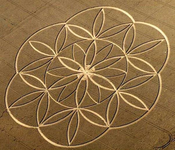 https://i1.wp.com/www.soulsofdistortion.nl/images/Flower%20of%20lifce%20crop%20circle.jpg