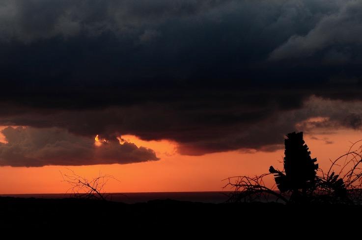 Okavango Sudafrica brilla di luce propria