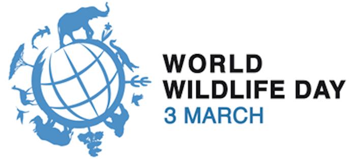 #WorldWildlifeday, Soultravelling, Sudafrica, Botswana
